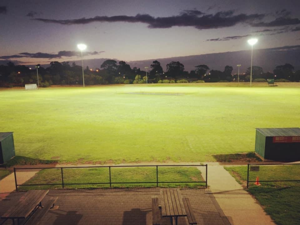 Ingle Farm Cricket at Night